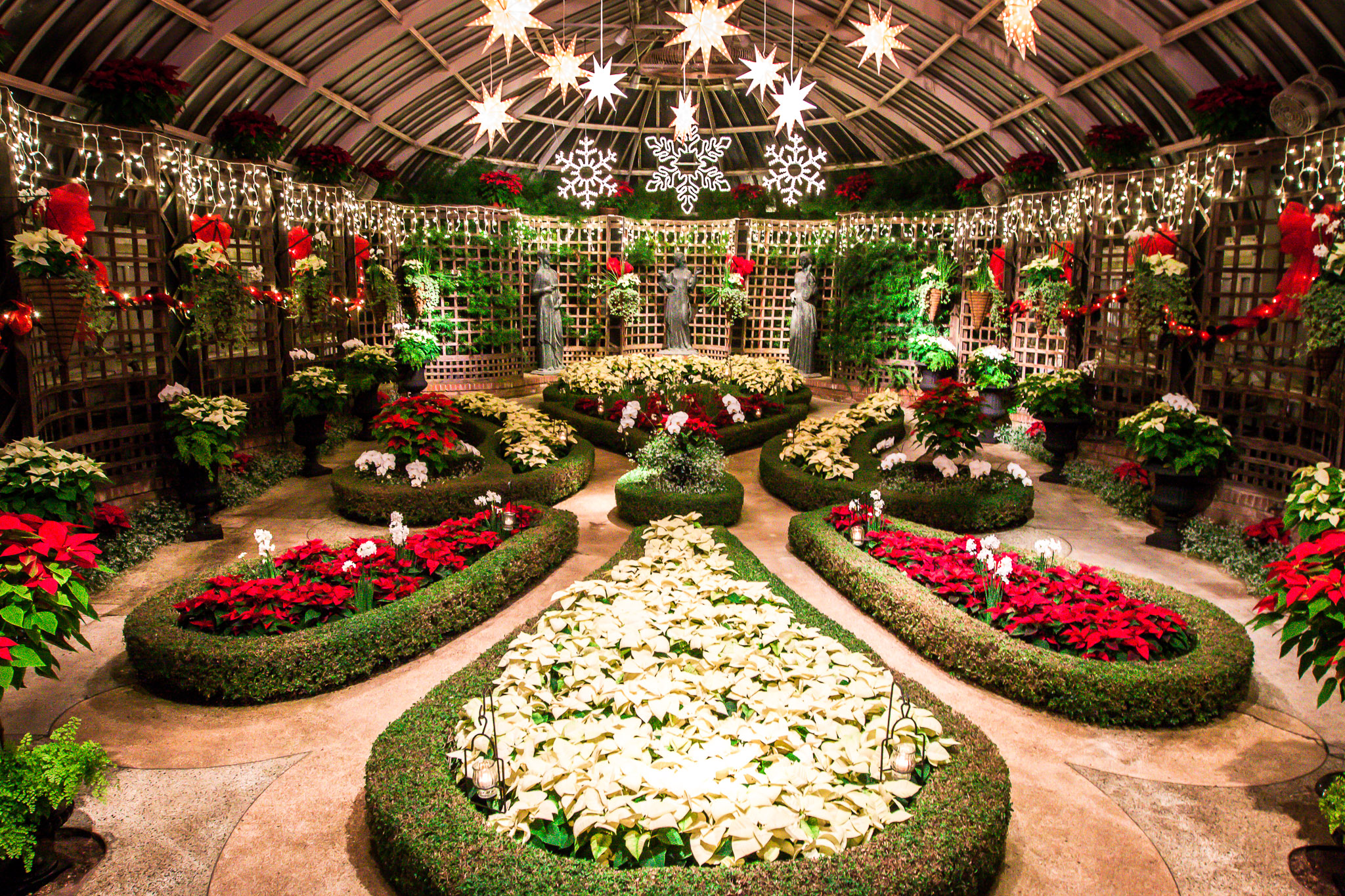 Phipps conservatory winter flower show and light garden eat work home north america phipps conservatory winter flower show and light garden north americapittsburghtravelusa dhlflorist Choice Image
